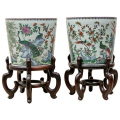 Fine Pair of Chinese Porcelain Jardinieres with Peacocks on Stands