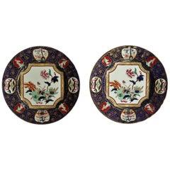Pair of 19th Century Mason's Ashworth's Ironstone Dinner Plates, Circa 1870