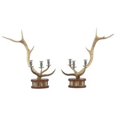 Pair of Red Deer Antler Candlesticks