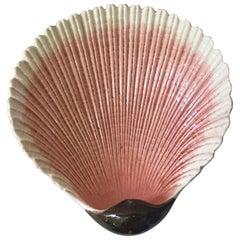 Majolica Shell Platter Sarreguemines, circa 1890