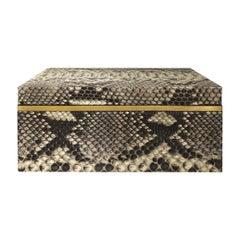Flair Home Collection Small Natural Python Box