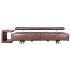 Koinor Come on Designer Leather Sofa Brown Three-Seat Couch