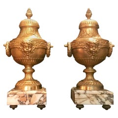 19th Century Pair of French Louis XVI Style Gilt Bronze lidded Urns
