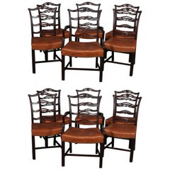 12 Antique Chippendale Style Carved Mahogany Ribbon Back Dining Chairs