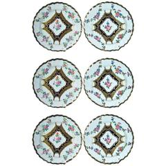 Chelsea Porcelain Set of Six Botanical Dessert Plates, 18th Century