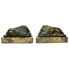 Pair of 19th Century, French Bronze Lions on Marble Bases