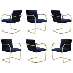 Brno Tubular Chair in Navy Velvet, Polished Brass, Set of 6