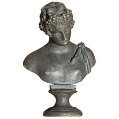 Bronze Bust of Narcissus 19th Century Grand Tour
