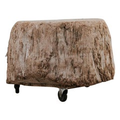 Tree Trunk Coffee Table on Wheels