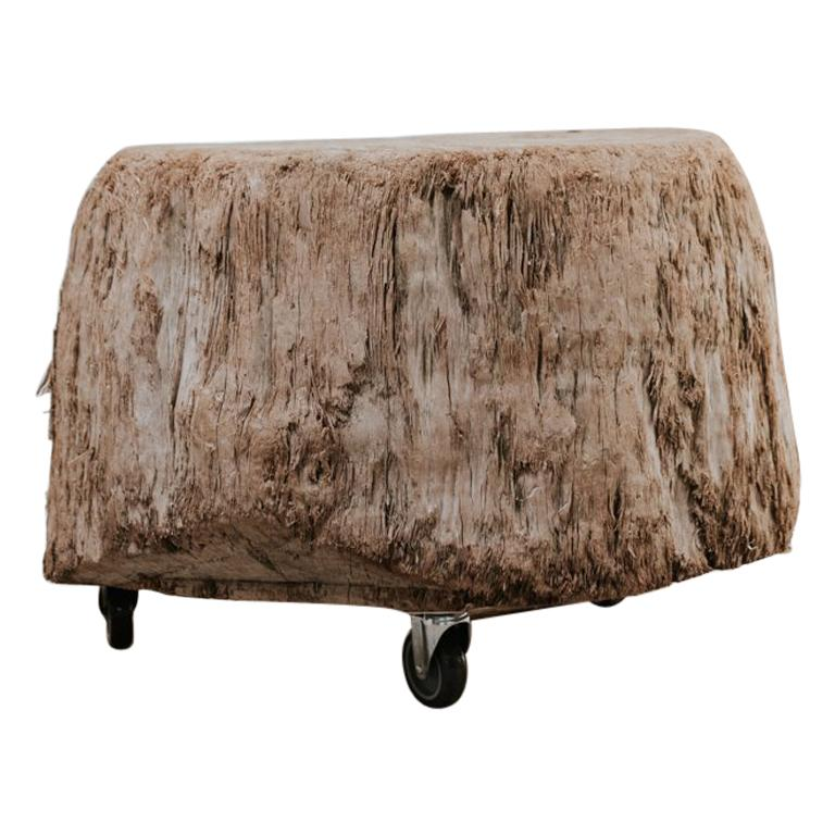 Tree Trunk Coffee Table on Wheels