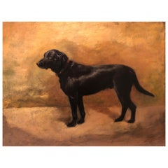Black Labrador Rare Oil on Panel by Ivester Lloyd