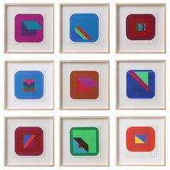 Nine Framed Pfahler Serigraphs