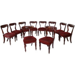 Set of 10 Antique English William IV Mahogany Dining Chairs by J Proctor