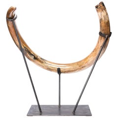 Ancient Ice Age Mammoth Tusk on Stand, 10,000 BC