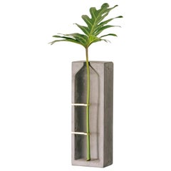 Vase S, Ghost Collection, Contemporary Vase in Concrete and Brass