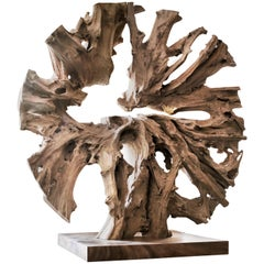Contemporary Monumental Teak Root Sculpture by Jerome Abel Seguin