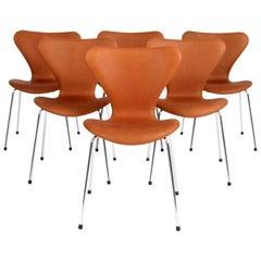 Arne Jacobsen Dining Chair, Model ''Syveren'' 3107, Cognac Aniline Leather