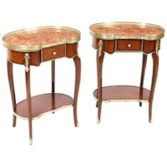 Antique Pair of Kidney Occassional Tables or Bedside Cabinets, 19th Century
