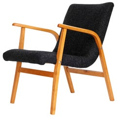 Roland Rainer Lounge Chair Armchair Cafe Ritter, Wood Newly Upholstered, 1950s