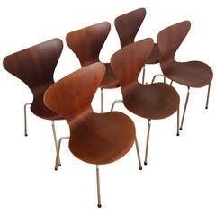 6 Vintage Series 7 Chairs 3107 in Teak 1960s by Arne Jacobsen for Fritz Hansen