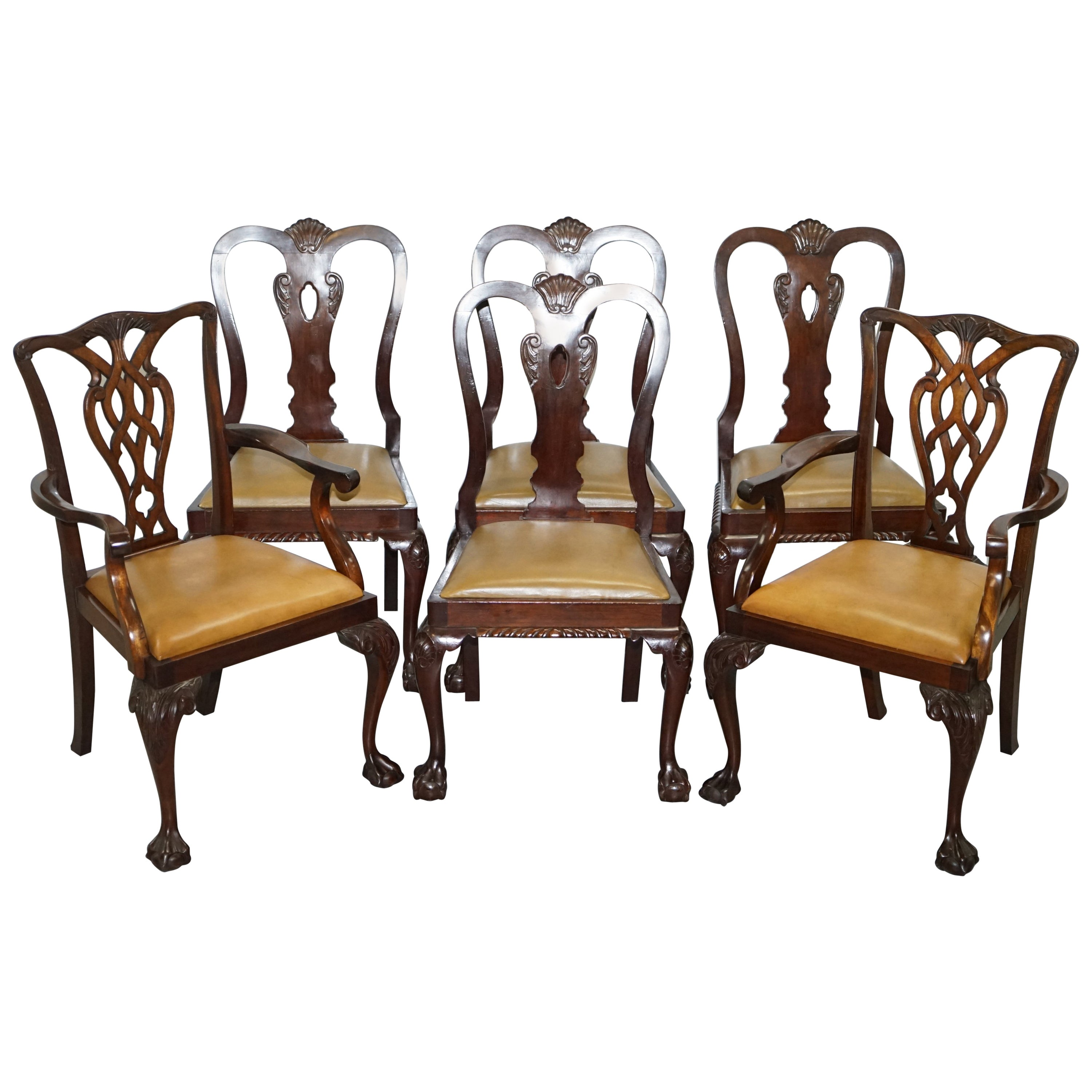 af4bec133daa5 Set of 6 Claw and Ball Mahogany Thomas Chippendale Style Antique Dining  Chairs at 1stdibs