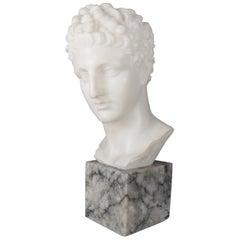 Antique Italian Classical Carved Alabaster Sculpture of Julius Caesar circa 1900