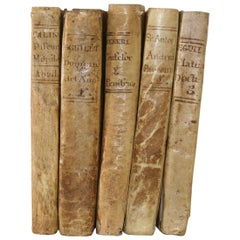 Nice Collection of 18th Century Weathered Spanish Vellum Books