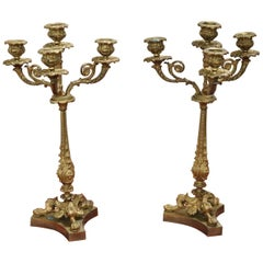 19th Century French Napoleon III Pair of Candelabras in Gilded Bronze 4 Arms