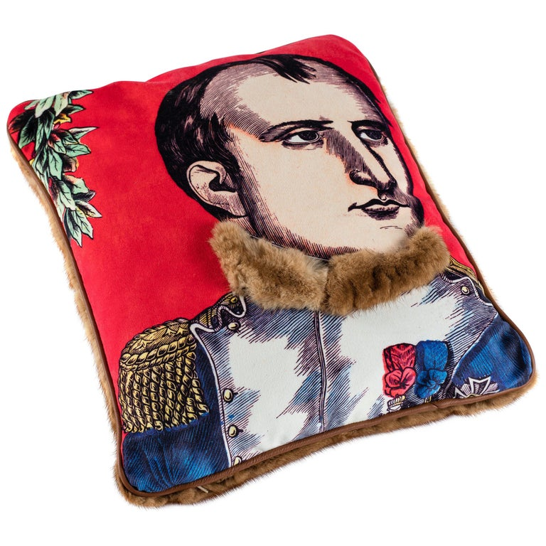Mink and Velvet Pillow, Printed Napoleon For Sale