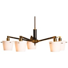 Brass 1950 Chandelier with Frosted with Glass Shades by Stilnovo, Italy
