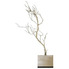 Natural Abstract White Birch Branch on Chrome Stand Italian Design, 21th century