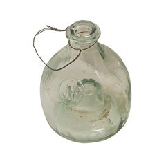19th Century Glass Insect Catcher