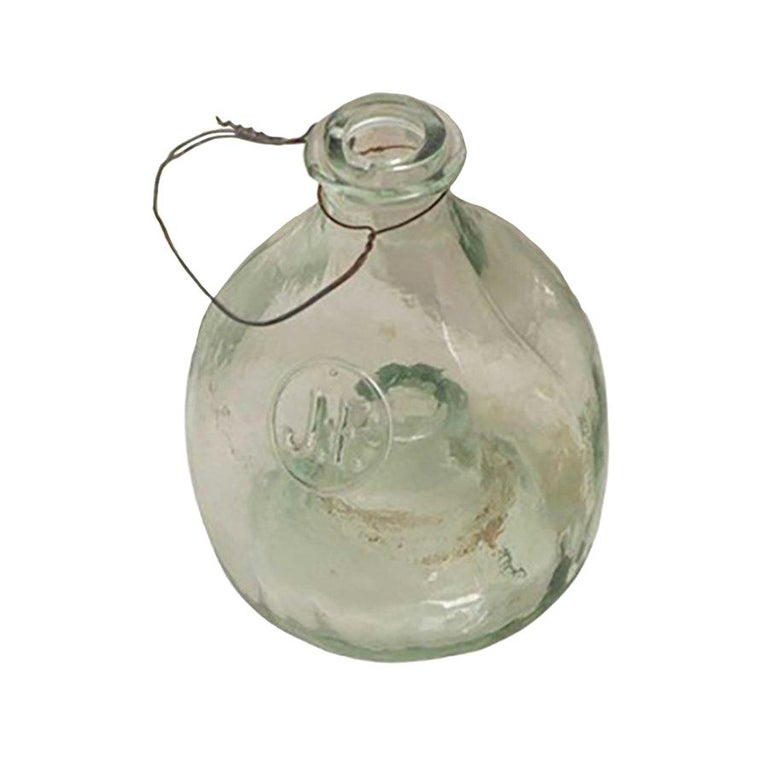 19th Century Glass Insect Catcher For Sale