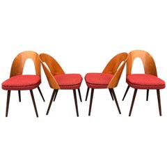 Set of Midcentury Dining Chairs by Antonin Suman, Czechoslovakia