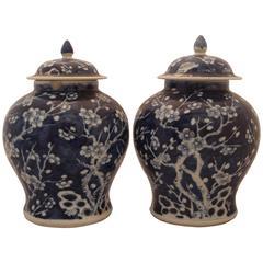 Pair of Blue Porcelain Vases
