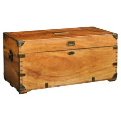English Camphor Wood Trunk with Brass Accents and Lateral Handles, circa 1880