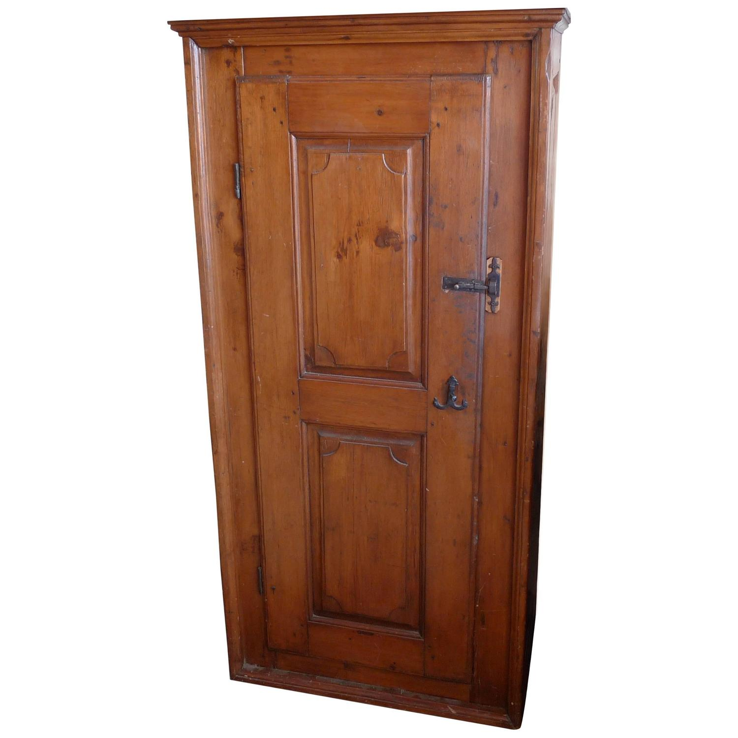 french 19th century narrow armoire or cupboard for sale at. Black Bedroom Furniture Sets. Home Design Ideas