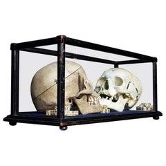 19th Century Ebonized Display Cabinet