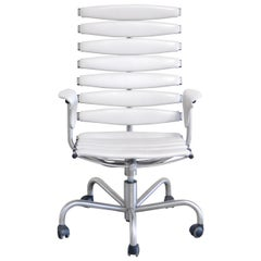 De Sede Skeleton Chair Ds 2100/ 151 Office Chair