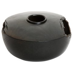 "Solid Bronze ""Terra"" Vase / Vessel - Primal Organic Sculpture with Ebony Finish"