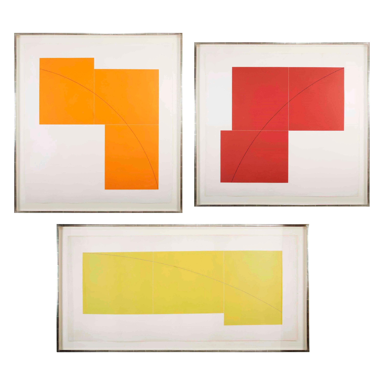 "Complete Set of ""Three Aquatints"", Prints by Robert Mangold"