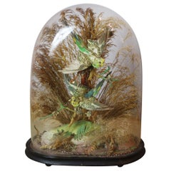 Pair of Green Taxidermy Birds in Victorian Glass Domed Case