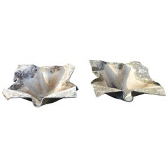 Pair of Large Elephant Ear Planters Designed by Willy Guhl
