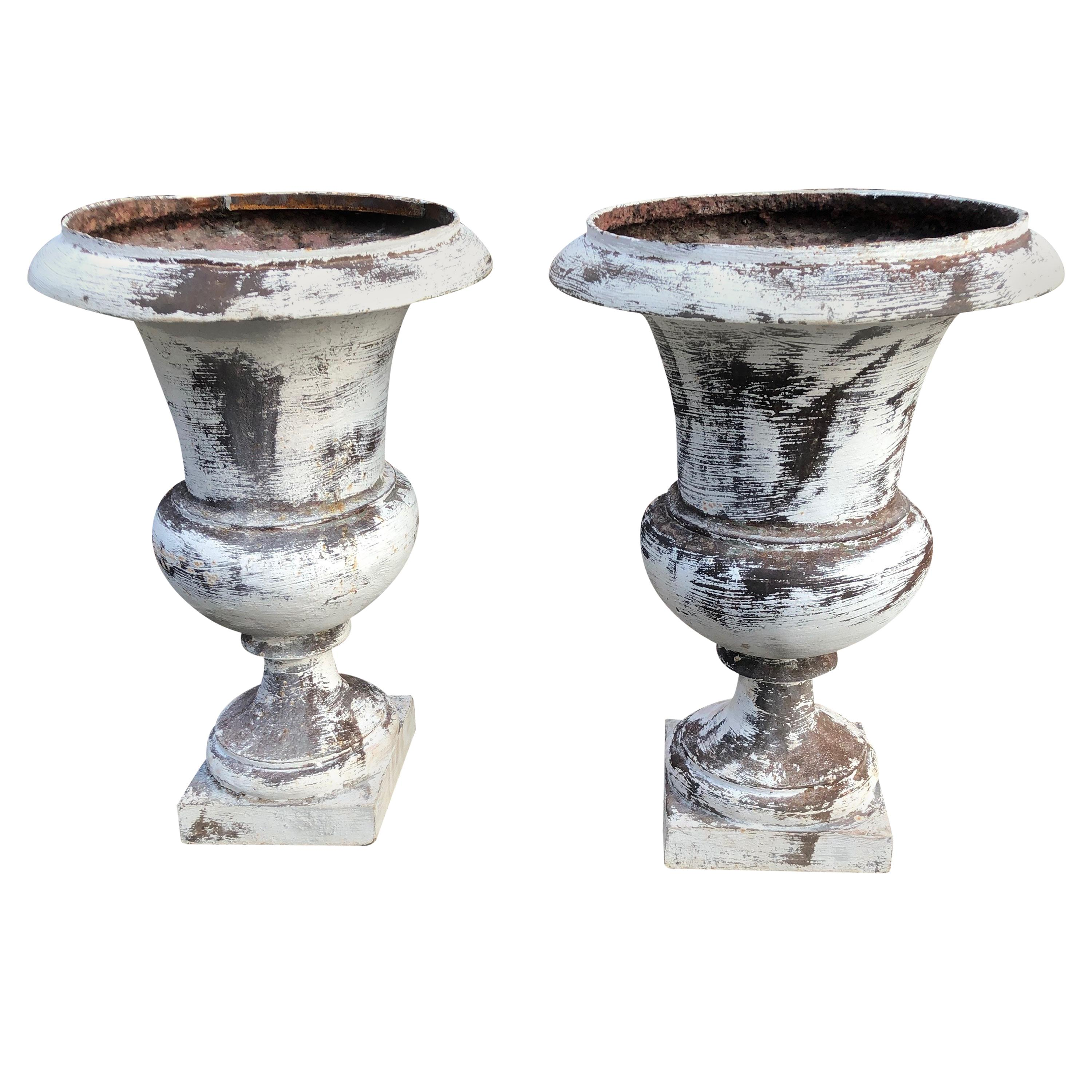 Pair of French 19th Century Cast Iron Medici Urns