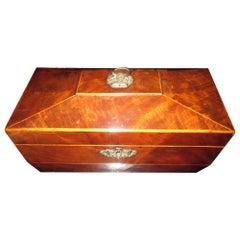 19th Century English Regency Mahogany Sarcophagus Form Tea Caddy