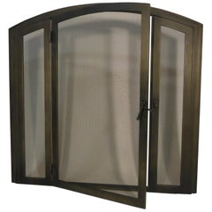 Contemporary Arch Shaped Fireplace Screen Door