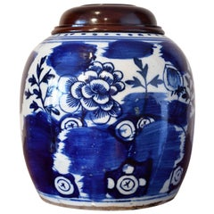 18th Century Qing Chinese Porcelain Cobalt Blue and White Jar with Peony