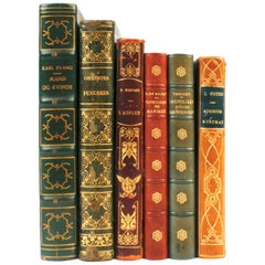Collection of Leather Bound Books in French and Danish