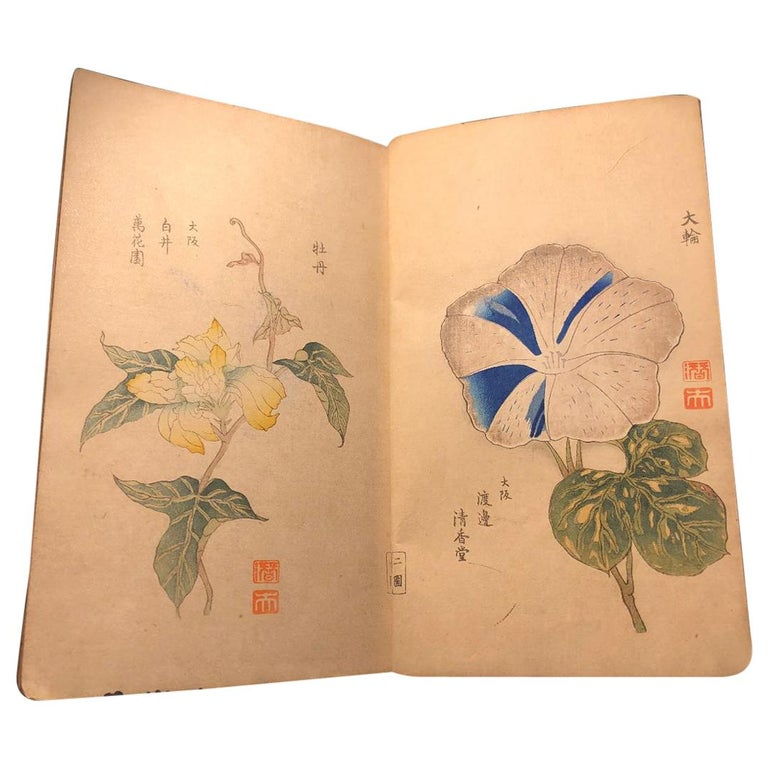 Important Japan Antique Woodblock Morning Glories 46 Vibrant Color Prints, 1903 For Sale