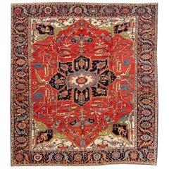 19th Century Antique Serapi Rug